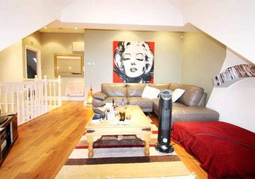 Stunning One Bedroom Flat Thrale Road