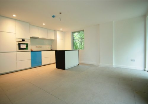 Beautiful Brand New One Bedroom Apartment St Rule Street SW8